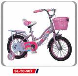 Princess Little Girls Pink Bicycle Kids Bike Cute Children Bike with Training Wheel Tc-507