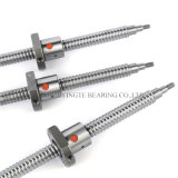 Taiwan Shac C7 Rolled Ball Screw Sfu Sfi Sfs Different Ballscrew