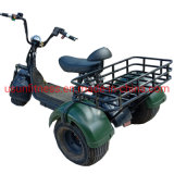 Factory Wholesale Price 1500 W Motor Electric Tricycle Cargo Farm Vehicle ATV with Ce