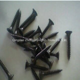 M3.5 M4.2 Black Drywall Screws with Coarse / Fine Thread