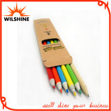 7′ Paper Color Pencil Set for Back to School (MP005)