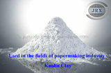 High Quality Low Price China White Kaolin Clay for Paint/Coating