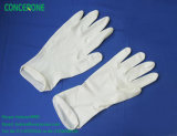 Powdered & Powder Free Latex Examination Gloves