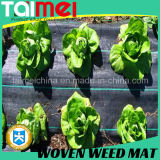 PP Woven Silt Fence/Agricultural Weed Mat/Agriculture Fabric