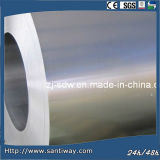 Hot Selling Galvanized Steel Coil (SC-109) Competitive Price