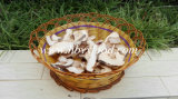 Natural Green Food Lower Price Dried Champignon Mushroom Slice