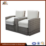Factory Quality Lounge Sofa Garden Furniture with Coffee Table (WF050586)