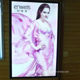 HD Print The Picture of LED Slim Light Box