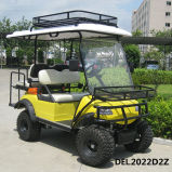 Electric Lifted Car Cart Buggy Utility Vehicle with Rack (DEL2022D2z, 4-Seater)