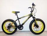 Customized Multi-Speed Aluminium Alloy Bicycle Adult Exercise Bicycle