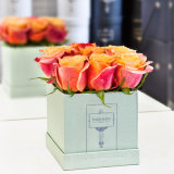 Fancy Paper Square Flower Box Packaging Gift Boxes with Best Price