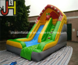 Customized Outdoor 6X4m Fish Theme Inflatable Slide for Kids