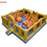 Funny Inflatable Fun City for Kids Inflatable Amusement Park