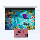 Fun and Intereating Children Interactive Projector Games in Play Ground