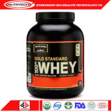 Wholesale Whey Protein Powder with Gold Standard Chocolate 5lbs