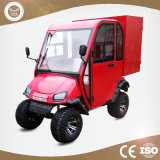New Arrival Chinese Electric Car with Cheap Price