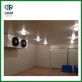 Fishing Equipment Cold Storage Frozen Meat Cold Room
