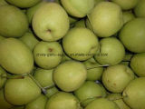 New Crop Fresh Wholesale Shandong Green Yellow Crown Fruit Pear Price