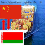 Cheap& Reliable Air/Sea Freight Agent From Shenzhen/Shanghai/Qingdao/Xiamen to Belarus