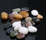 Factory Wholesale High Polished Pebble Stone for Landscaping