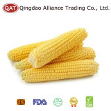 IQF Frozen Super Sweet Corn Kernel with Us Food Standard