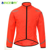 Lady′s Cycling Jacket, Low Price, Super Value