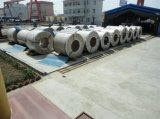 Crca CRC Cold Rolled Steel Coils SAE1008