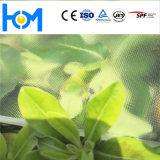 Fatory Price Solar Glass Low-Iron Sheet Flat Toughened Glass