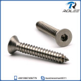 Stainless Flat Head Hex Socket Self Tapping Sheet Metal Screw