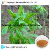Eleutheroside E Chinese Medicine Raw Materials Eleutheroside CAS14902-16-8