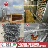 Farm Machinery Automatic Egg Collection Machine Egg Collecter