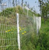 3D Security Fence /3D Residence Fence