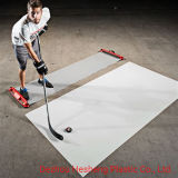 Hockey arena products