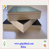 18mm Film Faced Plywood for Building