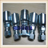 Cheap Price Chinese Carbon Steel Hose Fitting, Stainless Steel Heat Forged Hydraulic Fitting