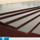 WBP Phenolic Glue Waterproof Formwork /Construction/Film Faced Plywood