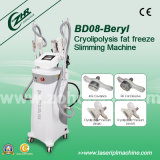 Perfect Machine for Cryo Device in China