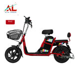 Al-Hm Cheap Electric Bike Battery for Electric Bike Electric Bicycle E Bike Price in Thailand