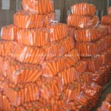 Export Standard Chinese New Crop Red Fresh Carrot