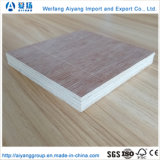 1220*2440mm Bintangor/Okoume/Poplar Commercial Plywood