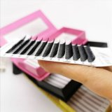 Wholesale Price Ultra Black Handmade Eyelash Extension Volume Lash Extensions with Private Label