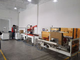 Fully Automatic Box/Carton/Case Erector/Machine with Siemens Configuration