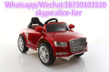Plastic Friction Power Ride-on Child Electric Car