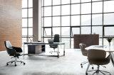 Fashionable Modern Executive Office Chair (HT-875A)