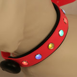 Pet Supply, High Quality Waterproof Colorful PVC Recharge LED Pet Collar, Dog Collar