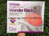 Burning Fat Slimming Patch Mymi Weight Loss Patch