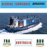 Dedicated 20gp FCL Container Port Sea Freigt From China to Shipping LCL Cargo Freight Price Brazil