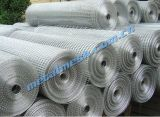 Welded Wire Mesh for Protecting