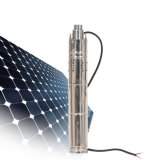 2019 Solar Water Pump for Agriculture 24 V DC Submersible Water Pump (S243T-30)