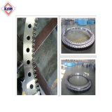 Tower Crane Construction Slewing Ring Price on Sale